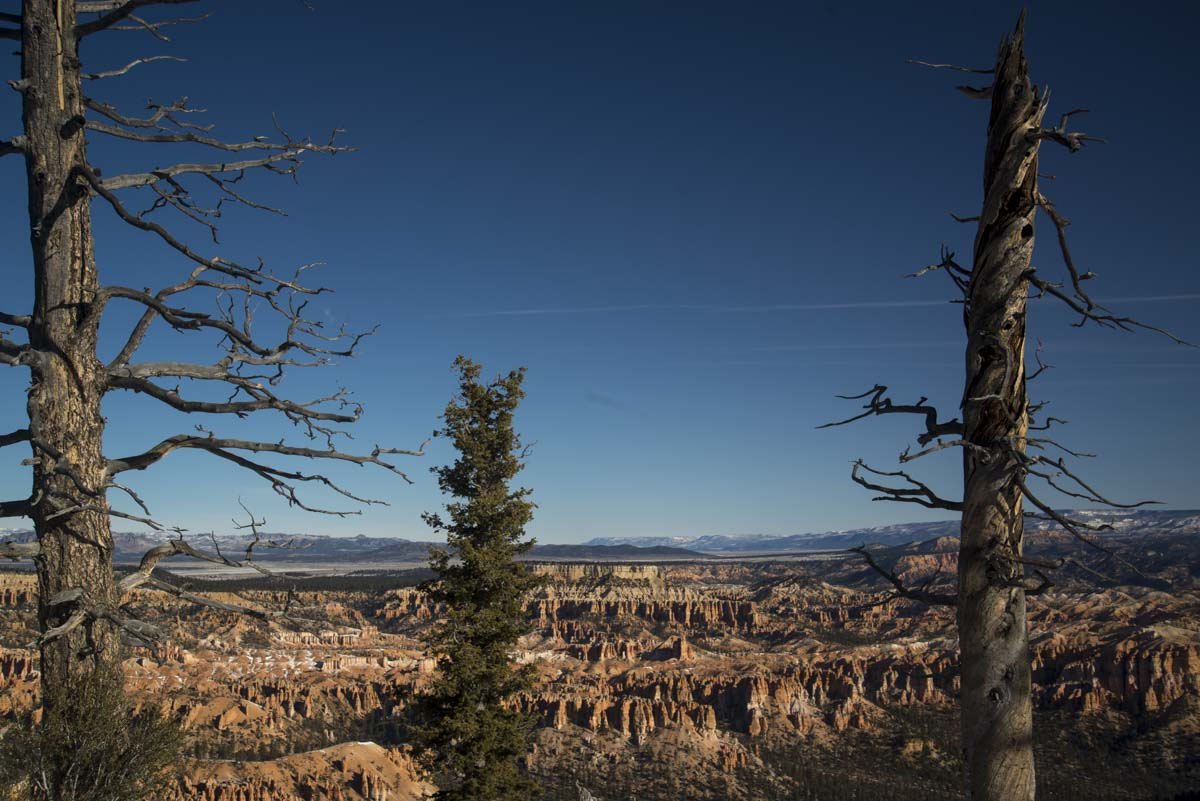 Patty's Epic Trip to the US. Part 6. Bryce Canyon